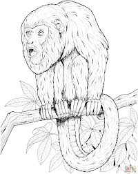 200x252 Coloring Pages For Adults Realistic Animals