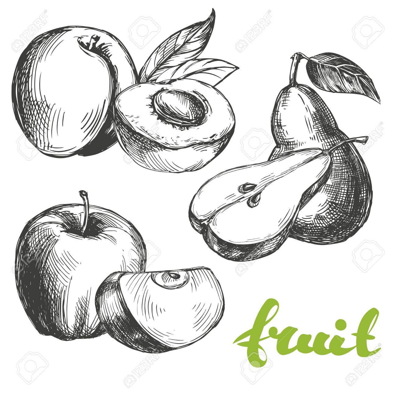 1300x1300 Fruit Peach, Apple, Pear Set Hand Drawn Vector Illustration
