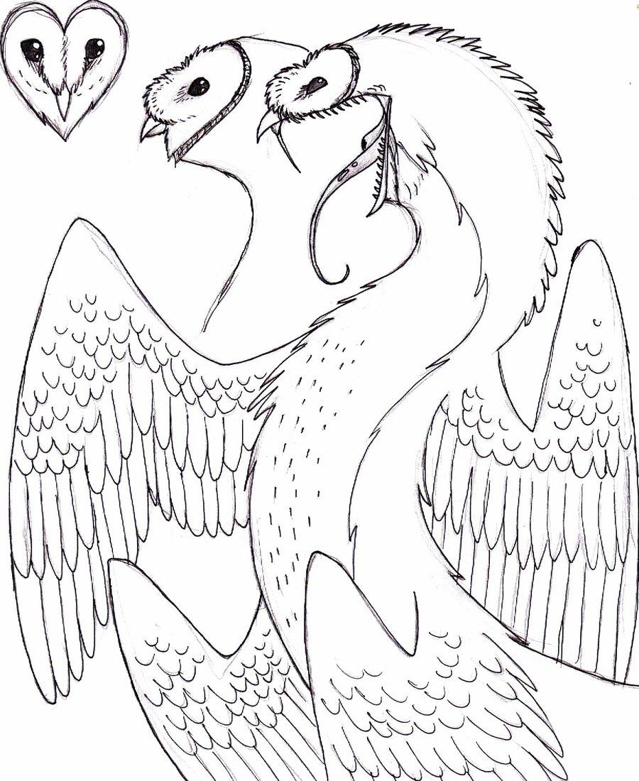 900x1100 Barn Owl Dragon 1 By X Ebee X