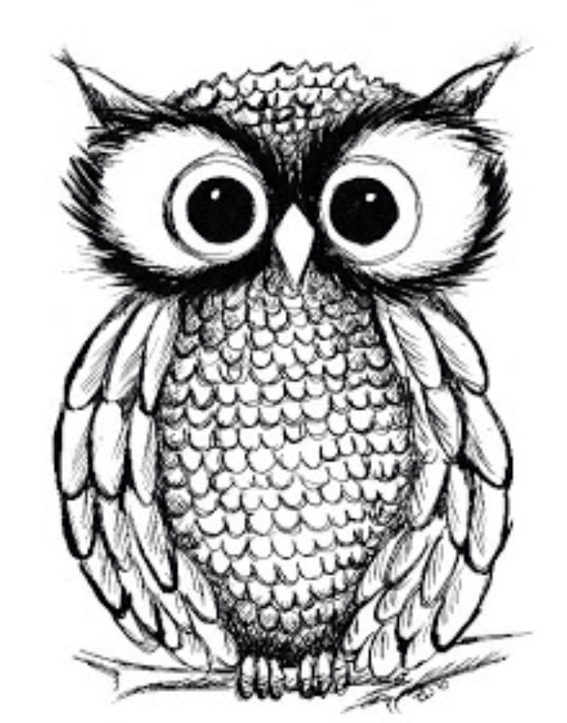 640x816 Pin By Natalie On Things I Love Owl, Draw