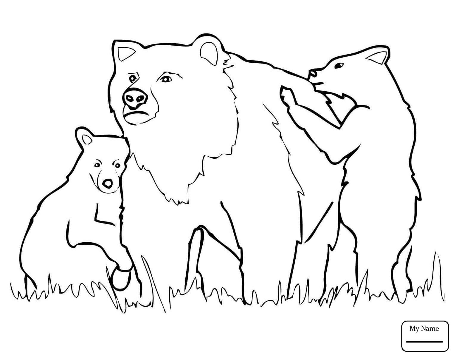 1530x1200 Grizzly Bears Mammals Cartoon Grizzly Bear Coloring Pages