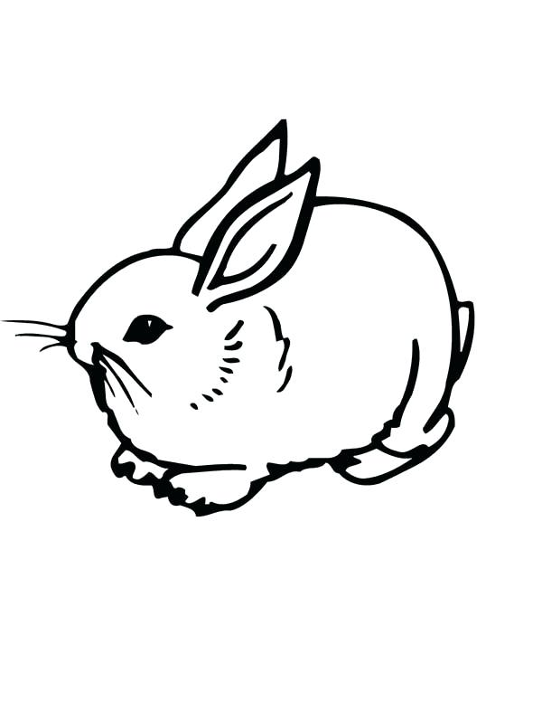 600x776 Coloring Page Bunny Bunnies Realistic Image Of A Sweet Little