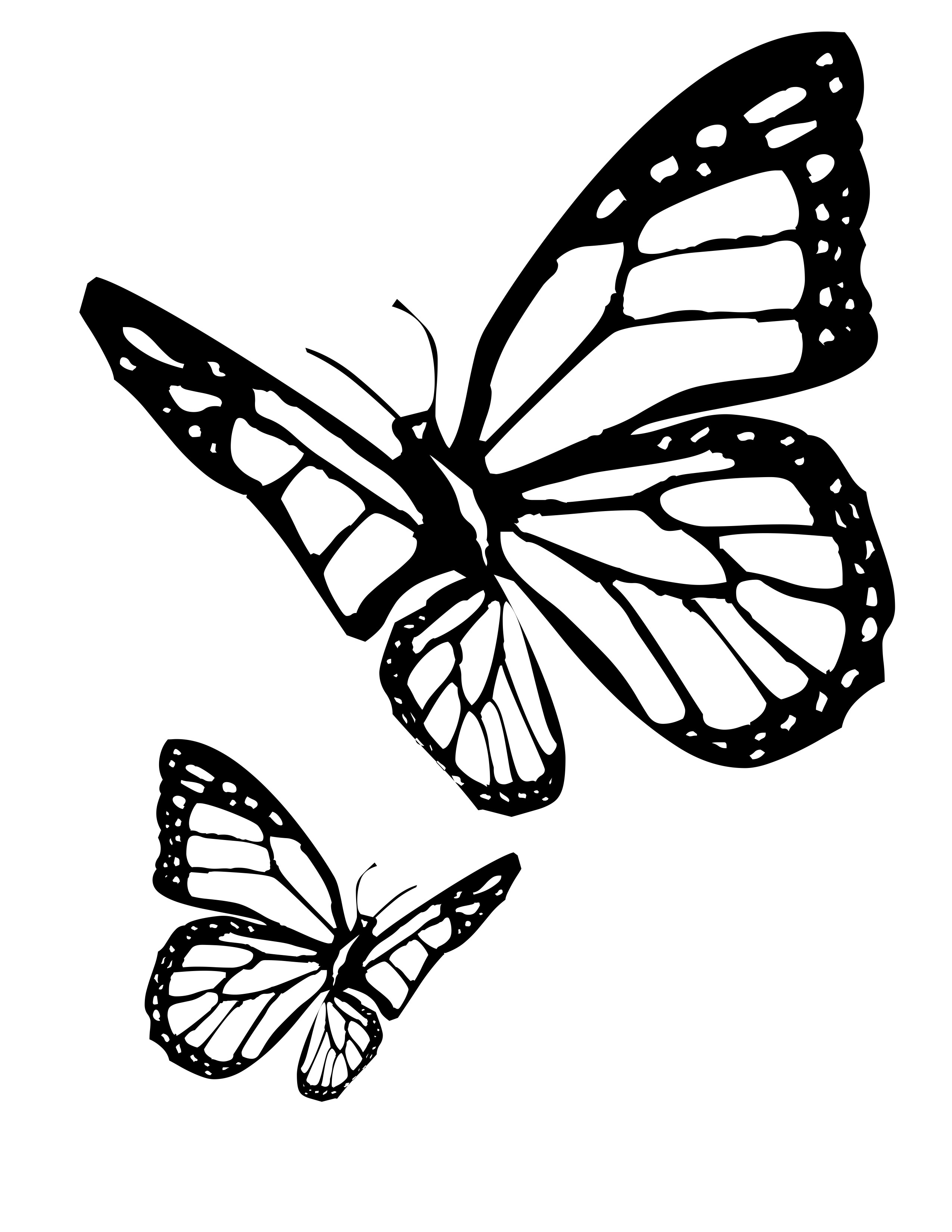 2550x3300 Butterfly Coloring Pages Wire Art Butterfly