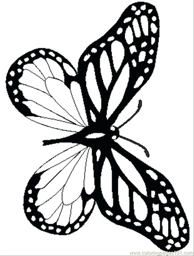 650x857 Monarch Butterfly Coloring Page 92 Also Coloring Pages Butterfly