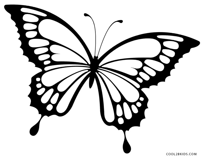 800x620 Realistic Butterflies To Color Butterfly Coloring Pages For Girls