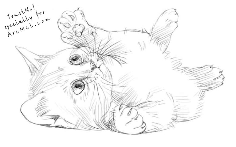 realistic drawn cats
