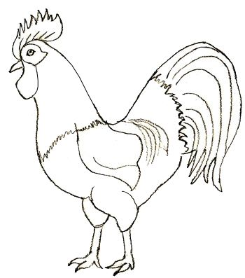 350x397 How To Draw A Rooster, Step 5 Roosters Drawings