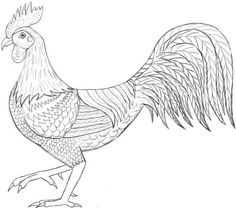 236x208 How To Draw A Hen Step 5 Art Hens, Drawings And Bird