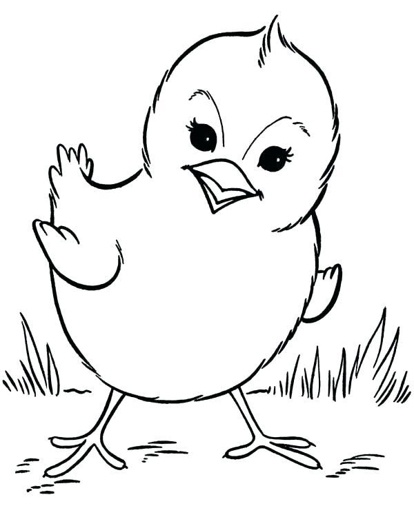 600x734 Chicken Coloring Page Chicken Coloring Pages Chick Chicken Little