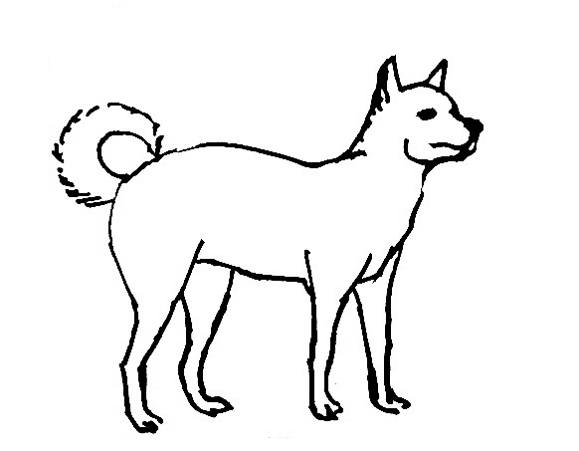 579x451 Dog Coloring Pages