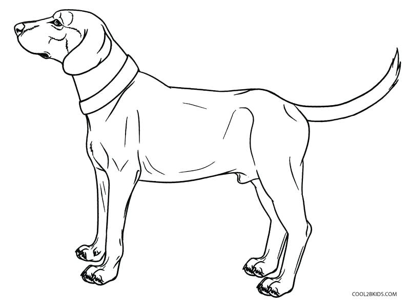 Realistic Dog Drawing at GetDrawings.com | Free for personal use ...