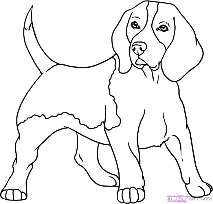 736x703 Dogs Coloring Pages Dog Coloring Page For Kids Dog Coloring Pages