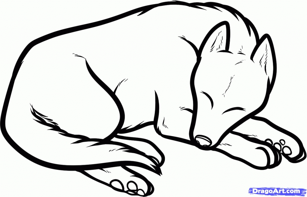1024x656 Drawing Easy Dog Cartoon Drawings Also Easy Realistic Dog