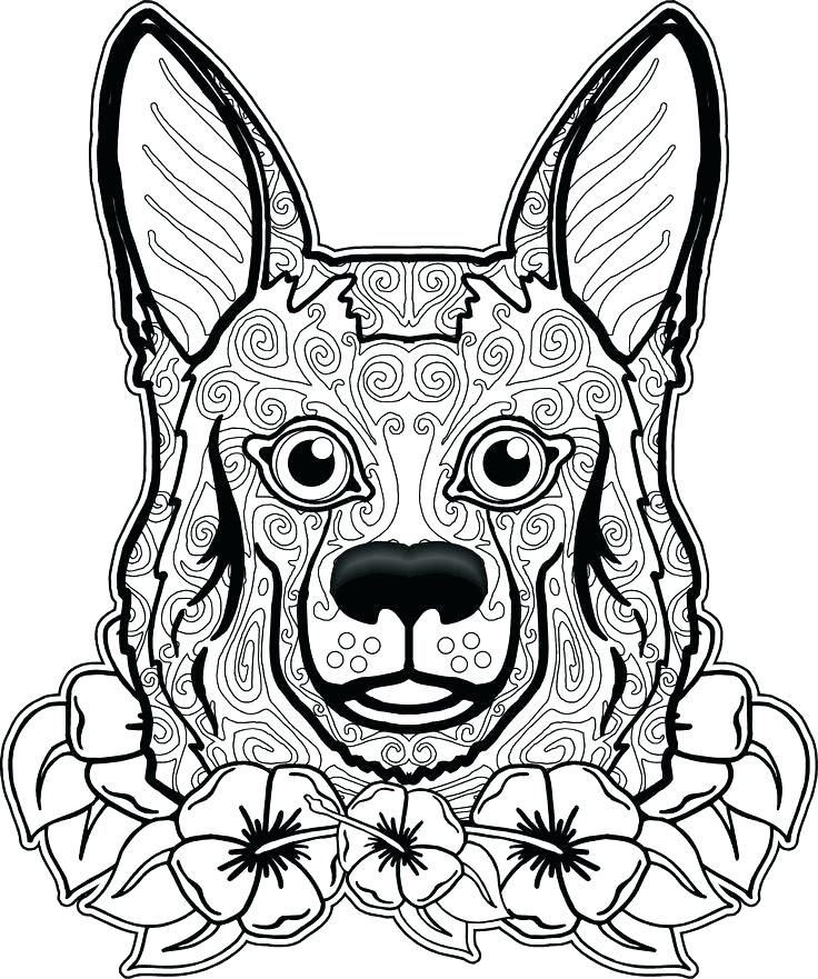 736x881 Fresh Free Coloring Pages Of Dogs Fee Dog Boxer Realistic