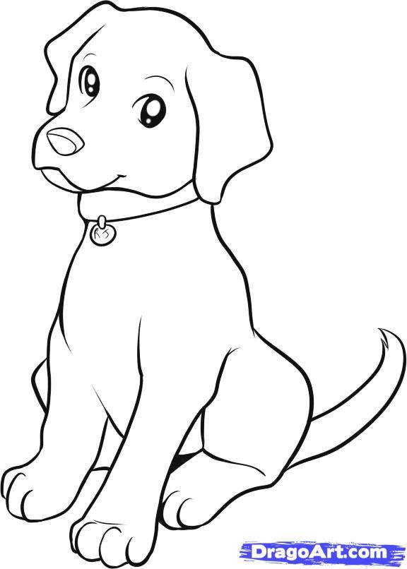 576x806 How Draw Dog Drawings How To Draw A Dog Speed Drawing
