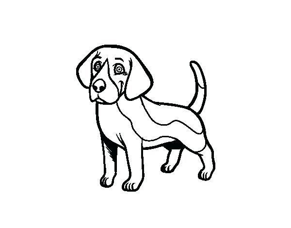600x470 Beagle Coloring Pages Beagle Dog Coloring Page Realistic Beagle