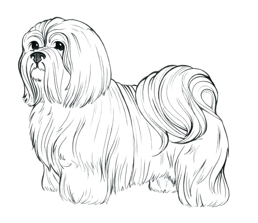 900x779 Realistic Coloring Pages Of Animals Astounding Realistic Dog