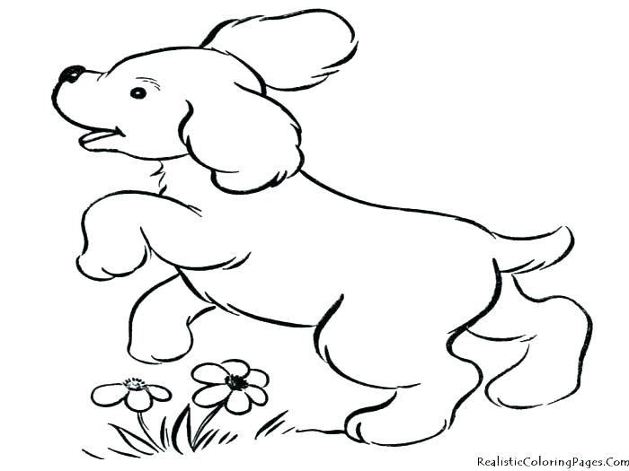 700x525 Beautiful Coloring Pages Dogs And Cats Free Download Realistic Dog