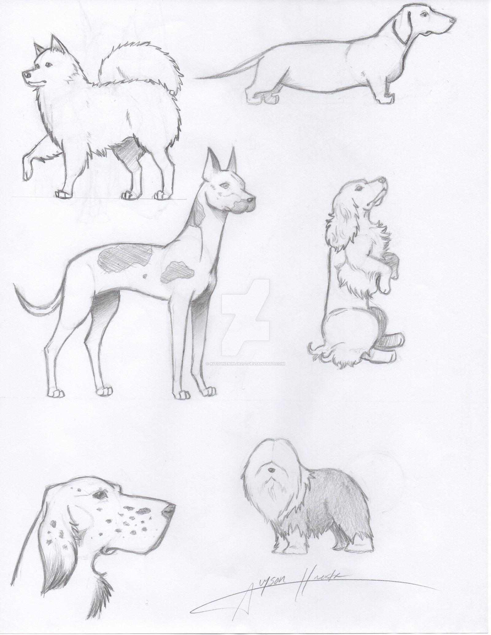 1600x2066 Realistic Drawing Of Dogs By Kitsuneninja277