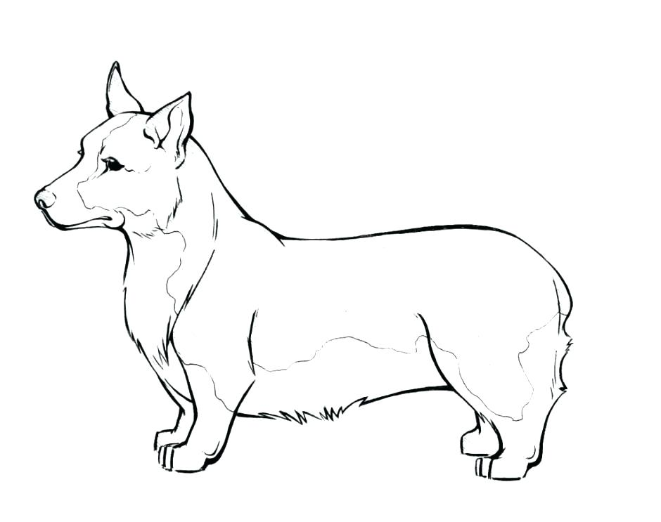 940x743 Complete Realistic Dog Coloring Pages New Beagle Free Printable