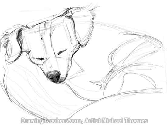 550x413 How To Draw A Dog Lying Down