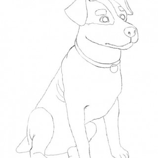 320x320 Realistic Dog Drawing Tutorial How To Draw A Real Step 4