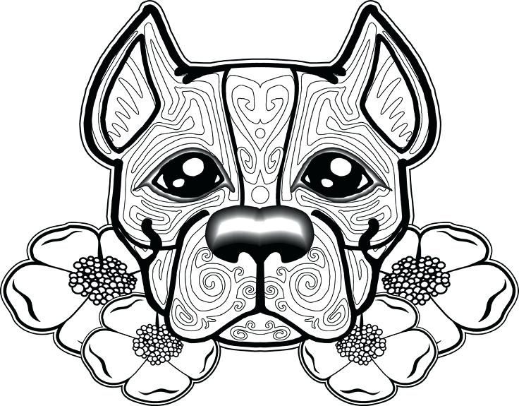736x575 Cool Dogs Coloring Pages Print Pit Bull Page Pencil And In Color 9