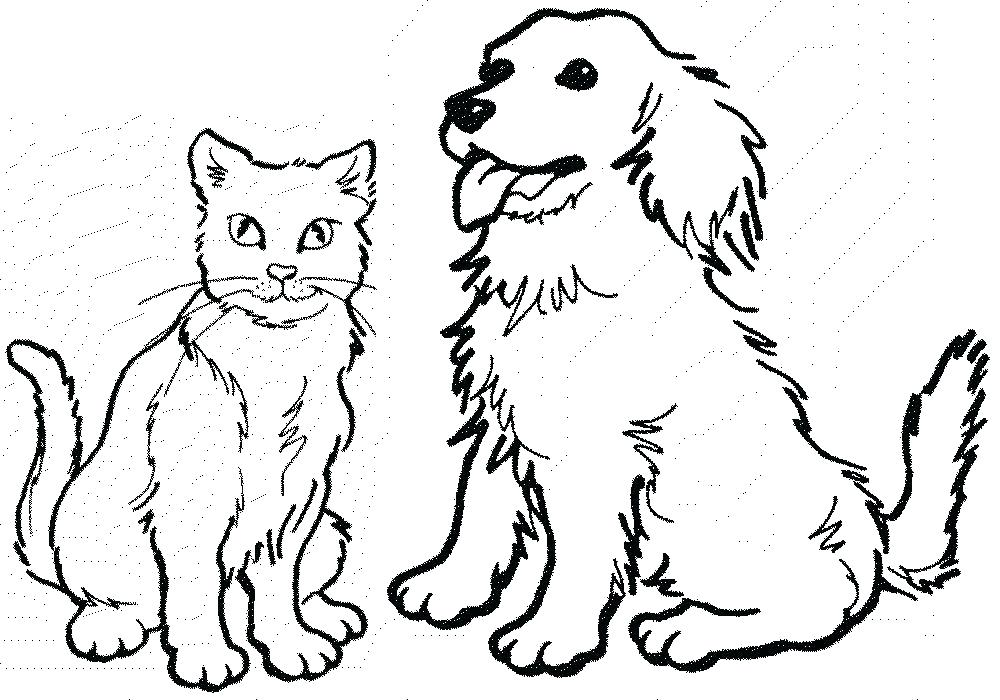 1000x700 Dogs Coloring Page Realistic Dog Coloring Pages Free