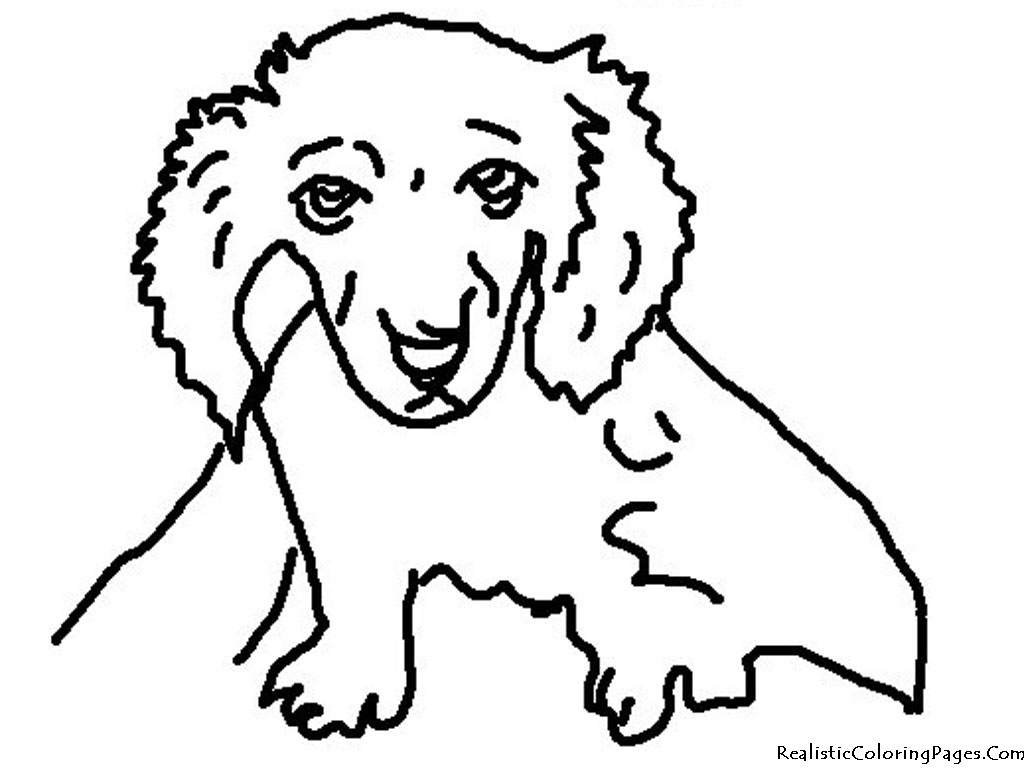 1024x768 Realistic Puppy Coloring Pages