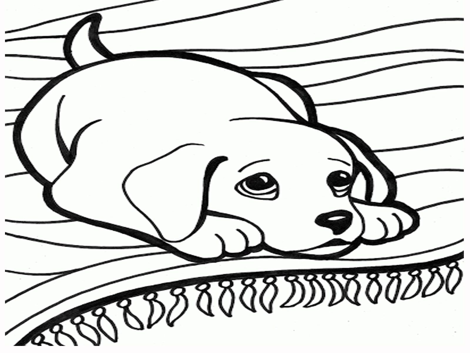 1600x1200 Realistic Dog Coloring Pages Az Coloring Pages Robyn