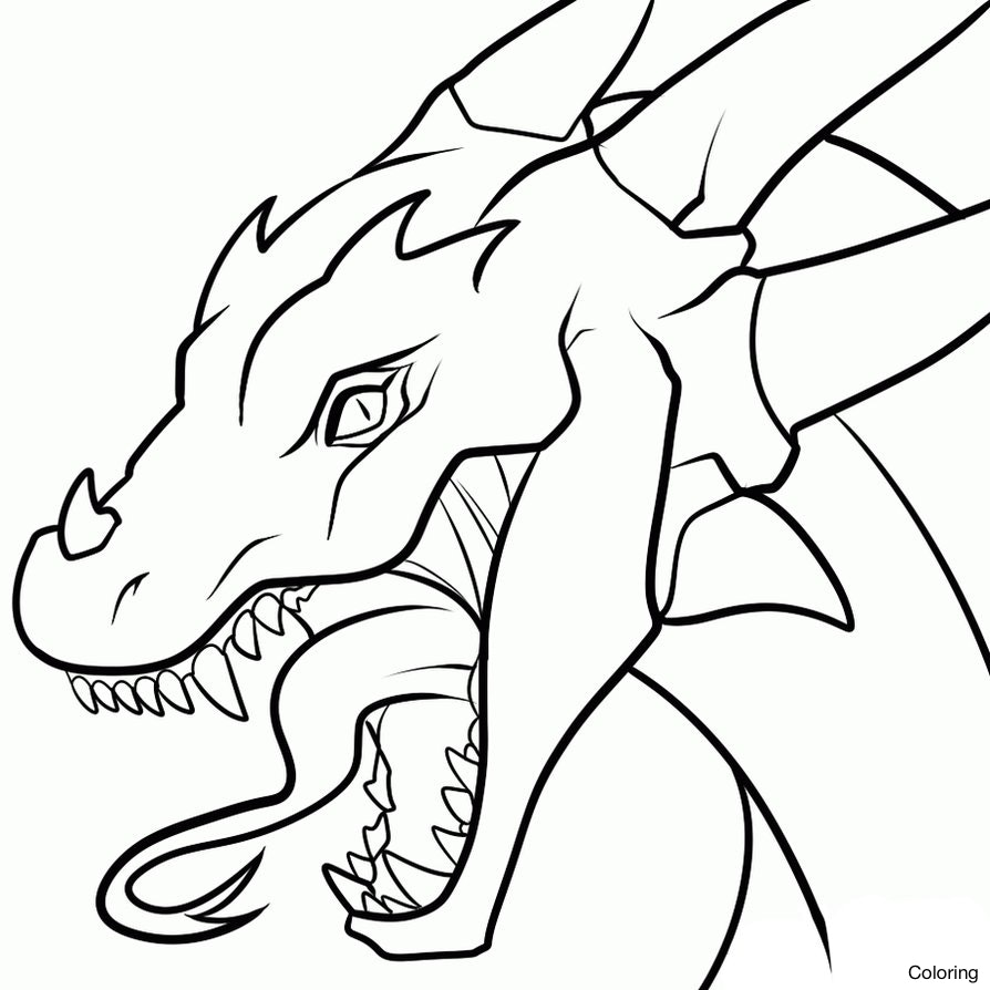 894x894 A Drawing Of Dragon How To Draw Step Dragons Drawings By Coloring