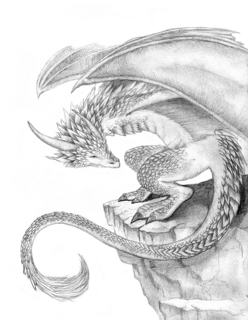 792x1024 Pencil Drawing Of Dragons Realistic Dragon Drawings Design