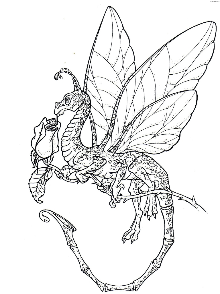 768x1024 Cute Baby Dragons Coloring Pages