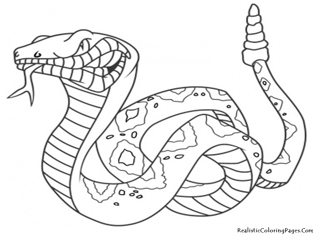 realistic animal coloring pages - photo#30