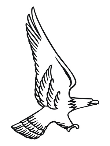 360x480 Attacking Bald Eagle Coloring Page Free Printable Coloring Pages