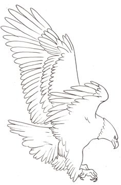 236x361 Image Result For Eagle Drawings Eagle Wood Signs