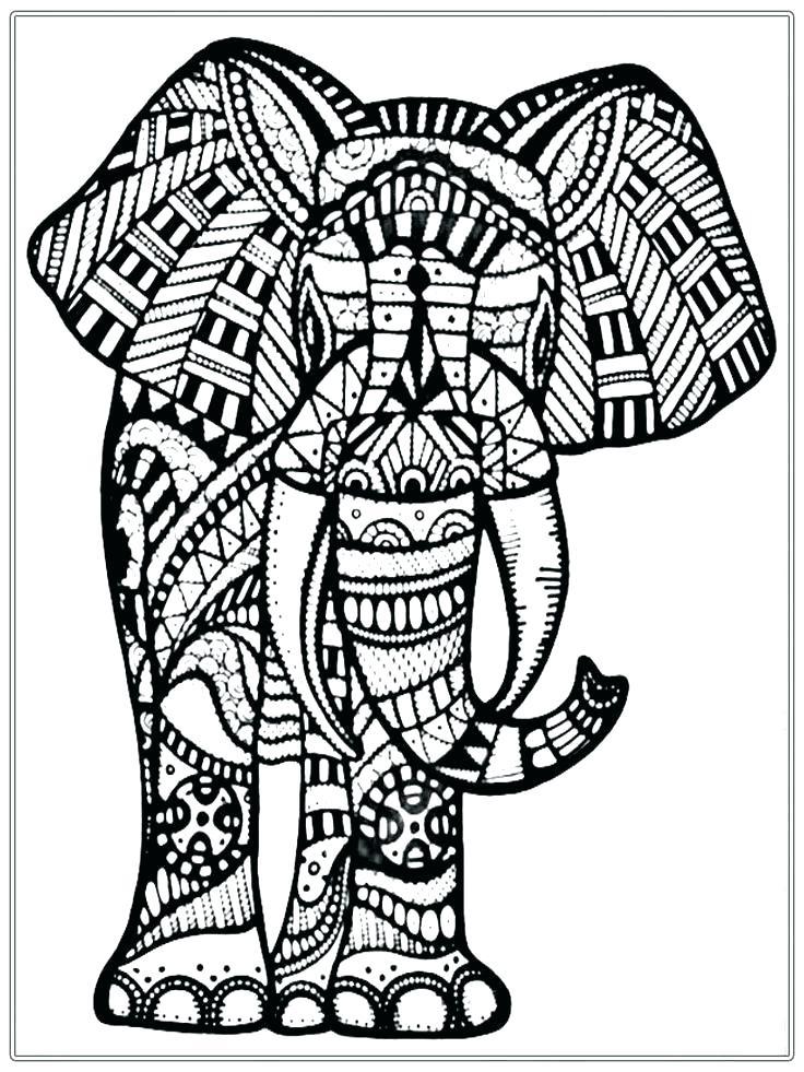 736x981 Elephant Coloring Sheets Coloring Pages Elephant Big Elephant