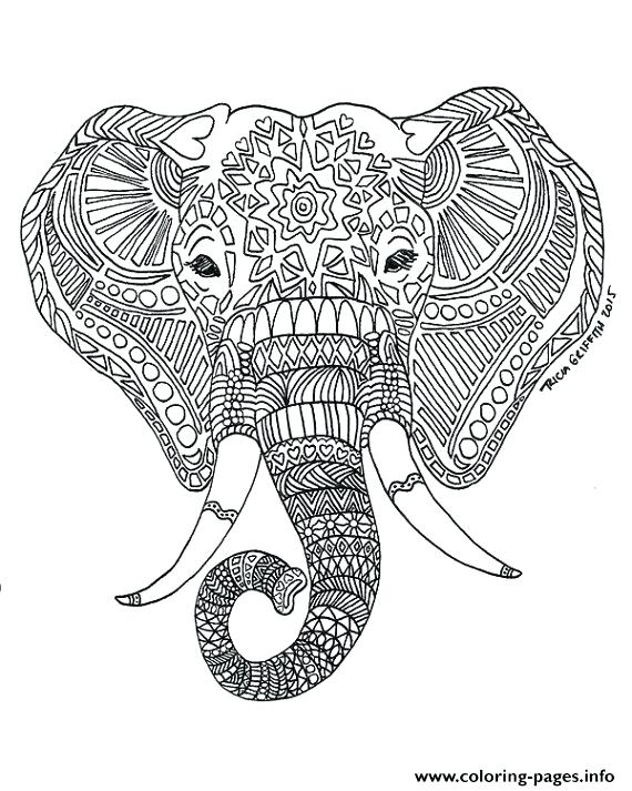 570x713 Elephants Coloring Pages For Adults Elephant Color Page Print Kids