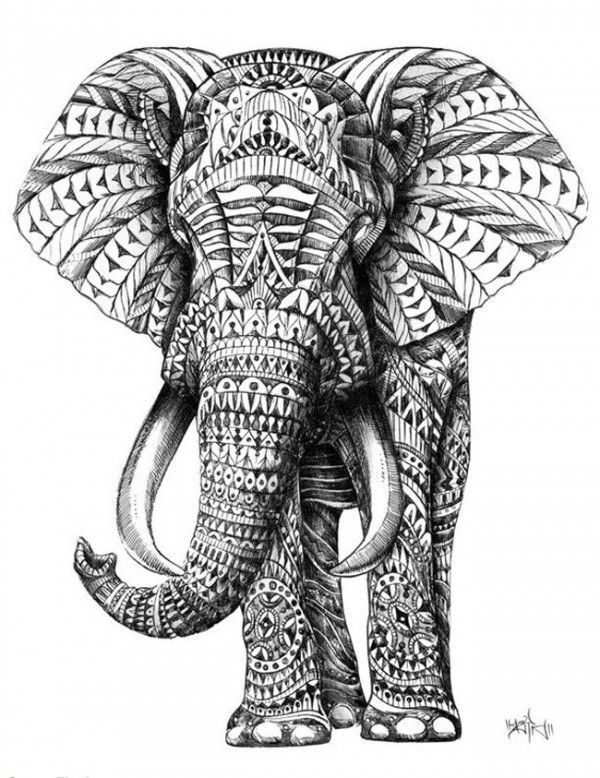 600x778 Elephants Are My Spirit Animal. They Are Often Perceived As Scary