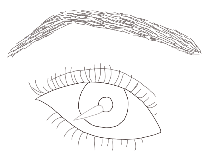 737x573 Realistic Eye Outline By Gamenhuang