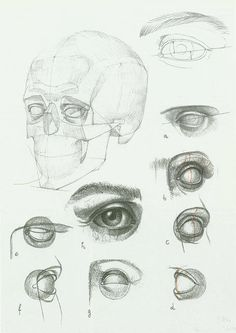 236x333 Tutorial Constructia Corecta A Unui Portret Books, Anatomy