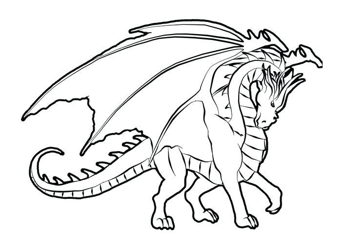 709x513 Dragon Color Pages Realistic Dragon Coloring Pages For Adults