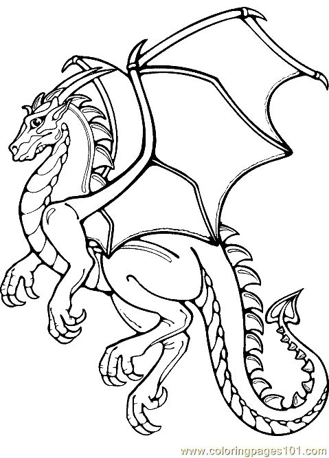 479x666 Dragon Coloring Pages Realistic Coloring Pages Dragon Coloring
