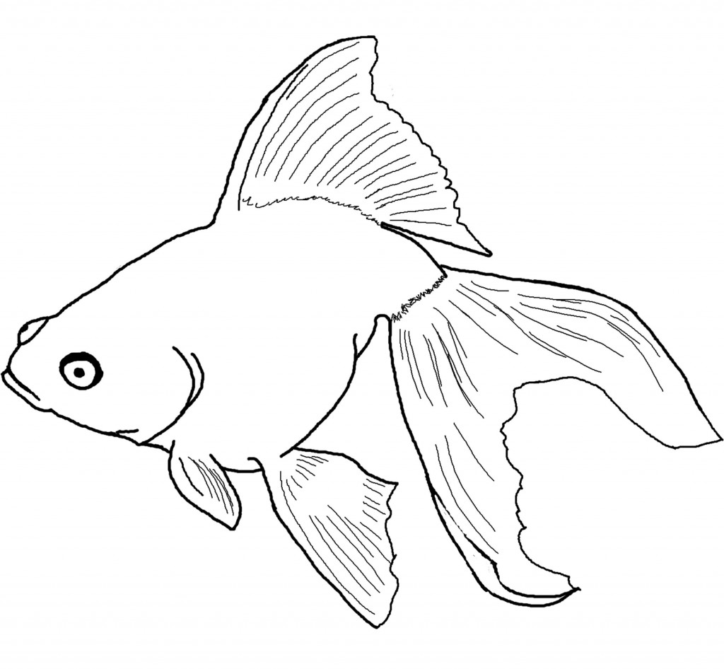 1024x946 Free Printable Fish Coloring Pages For Kids