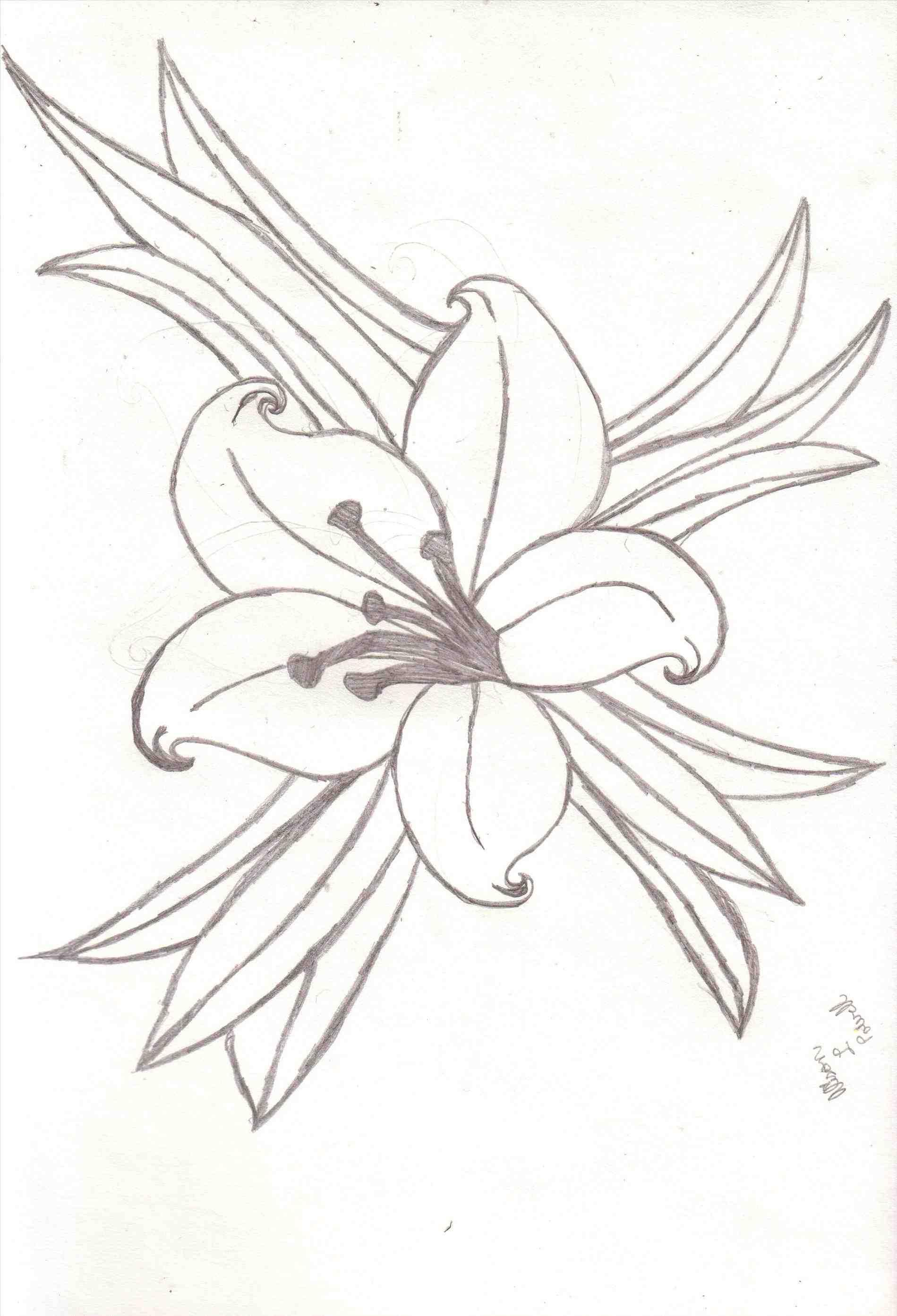 1899x2787 How Drawings Of Calla Lilies Calla Lily Realistic Art Pencil