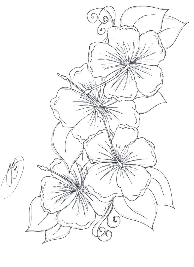 Realistic Flowers Drawing at GetDrawings.com | Free for personal use ...