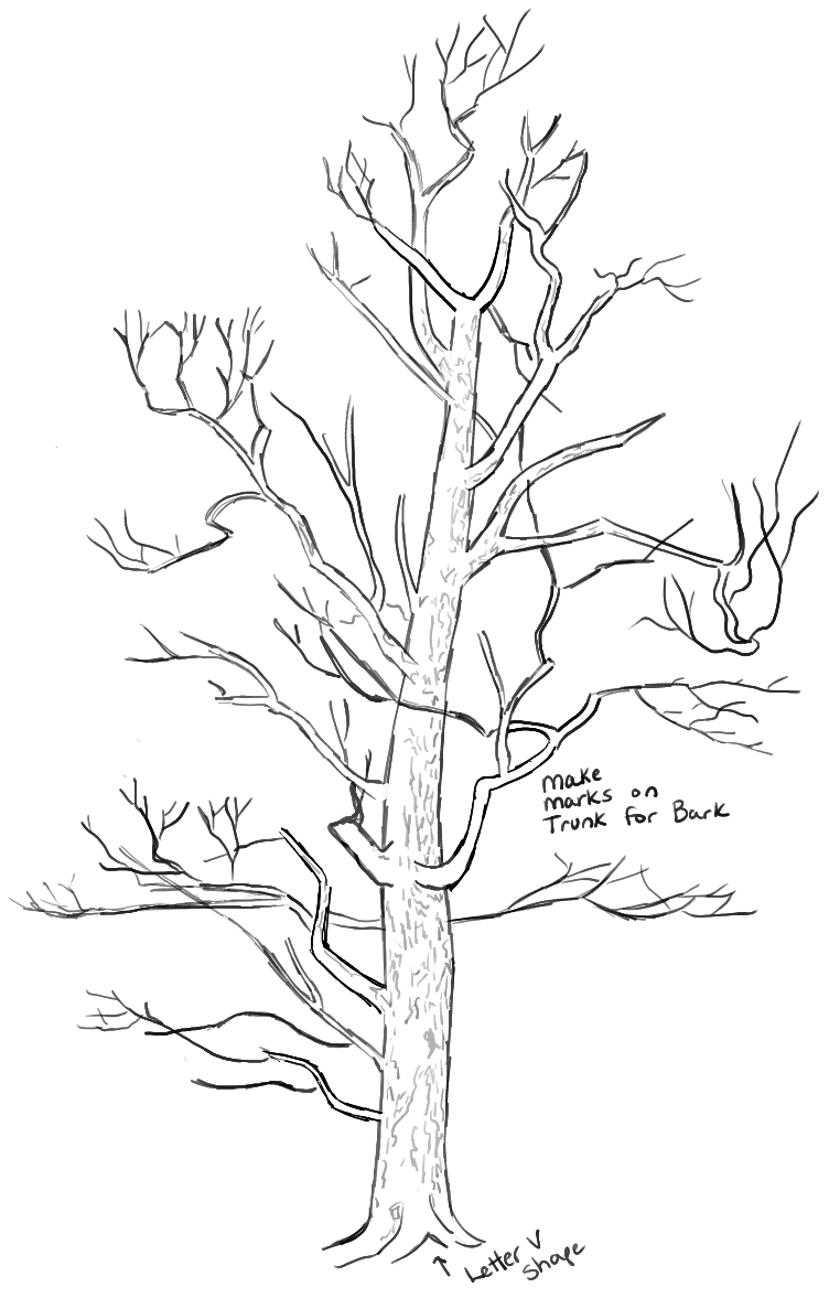 752x1177 Learn How To Draw Realistic Trees With The Following Step By Step