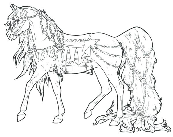 Realistic Horse Drawing At Getdrawings Com Free For Personal Use