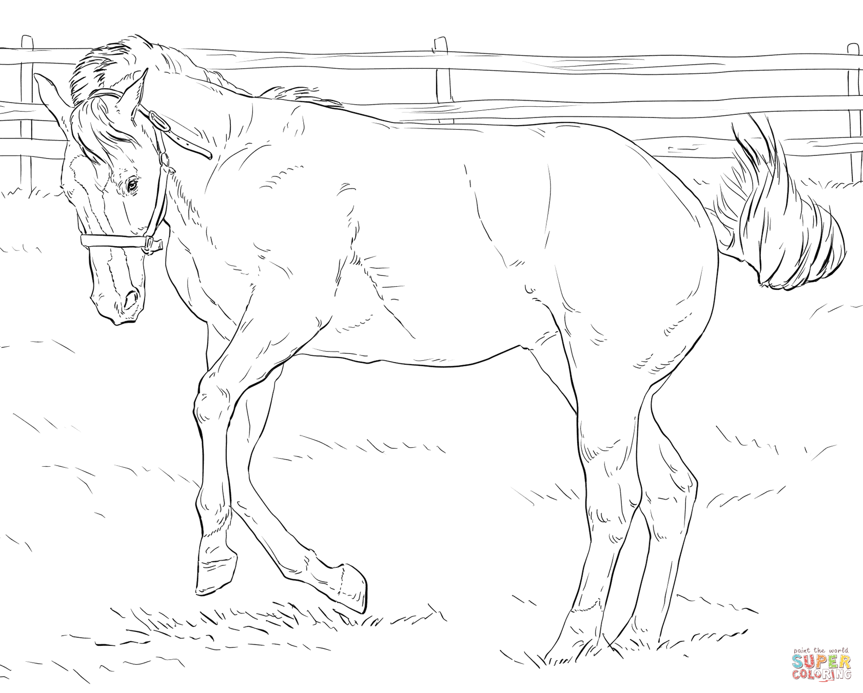 Realistic Horse Drawing at GetDrawings.com | Free for personal use ...