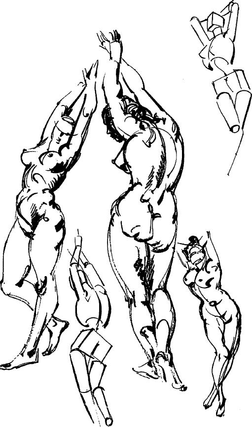 511x866 How To Draw People With Human Anatomy Lessons How To Draw